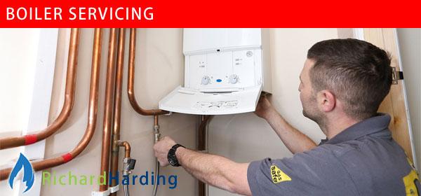 Richard Harding, boiler servicing in Worthing